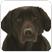 Logo Animals-giftshop.nl